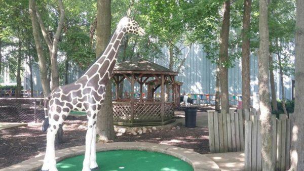 Mini golf giraffe