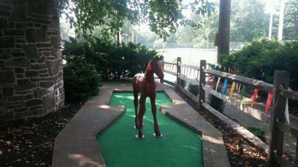 miniature golf horse