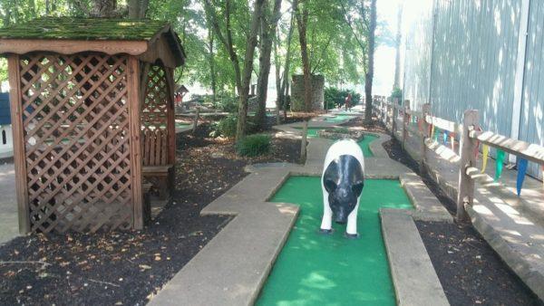 Newark golf pig