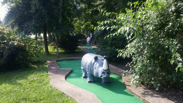 mini-golf rhino