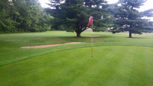 Newark golf greens